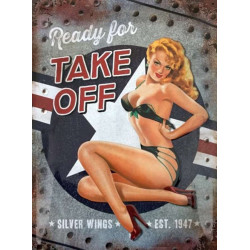 Pin-up - Ready for Take Off