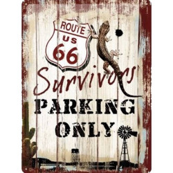 US Route 66 - Survivors